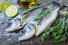 Two raw seabass with lime and rosemary Royalty Free Stock Photography
