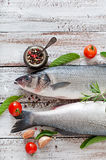 Two raw seabass with spices Royalty Free Stock Images
