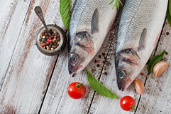 Two raw seabass with spices Royalty Free Stock Photo