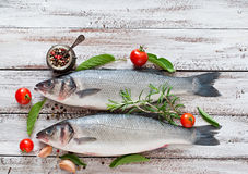 Two raw seabass with spices Stock Photography