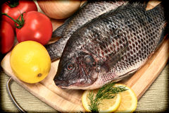 Free Two Raw Tilapia Fish In Vintage Style Photograph Royalty Free Stock Image - 27803966