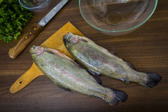 Two raw trouts Royalty Free Stock Image