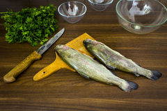 Two raw trouts Royalty Free Stock Photos