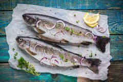 Two raw trouts on paper with thyme and lemon and red onion slices Stock Images