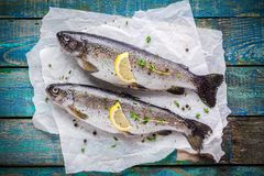 Two raw trouts on paper with thyme and lemon  slices Stock Photos