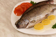 Two raw trouts Stock Photos