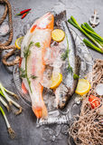 Two raw  whole fish with fresh ingredients for tasty and healthy cooking. Gold Rainbow trout on concrete stone background with ice Stock Photo