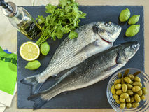 Two ready to cook raw fish with lemon and olives on stone slate. Board. Top view Royalty Free Stock Images