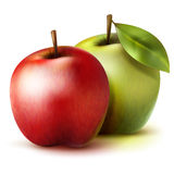 Two  realistic apples Royalty Free Stock Photos