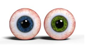 Two realistic human eyeballs with blue and green iris isolated on white background 3d render. Realistic eye balls isolated on white background Royalty Free Stock Photo