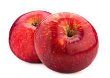 Two red apple Stock Image
