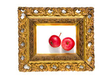 Two red apple in ancient antique golden picture frame Royalty Free Stock Photography