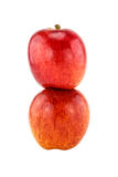Two red apple Stock Photography