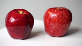 Two red apple rotation on white background. Red apple rotation on white background stock video