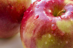 Two red Apple with water droplets. Closeup Stock Images