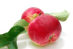 Two Red Apples. Two Red Apple with Green Leaves Isolated on White Stock Photo