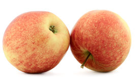 Two red apples. Two fresh red apples isolated on white background stock images