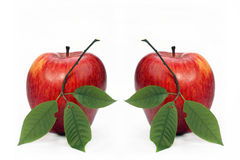 Two red apples. With leaflets on a white background Royalty Free Stock Image