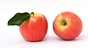 Two red apples. Isolated on white background Royalty Free Stock Image