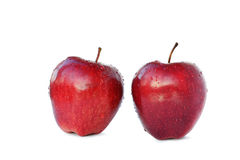 Two red apples with clipping path Stock Photography