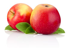 Two red apples fruits and green leaves isolated