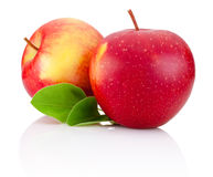 Two red apples fruits and green leaves on white Royalty Free Stock Images