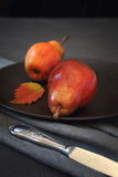Two red autumn pears Royalty Free Stock Images