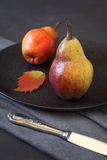 Two red autumn pears Stock Image