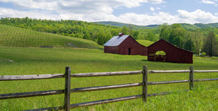 Two Red Barns In A Field Stock Photo