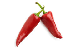 Two red bitter pepper Stock Photography