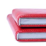Two red books Royalty Free Stock Images