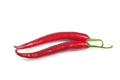 Two red burning pepper Stock Photography