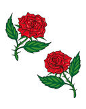 Two red cartoon roses Royalty Free Stock Photography