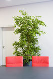 Two red chairs in a meeting room Royalty Free Stock Photos