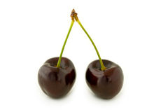 Two red cherries. Pair of dark red cherries, with stalks. Isolated on white background, with shadow Royalty Free Stock Photo