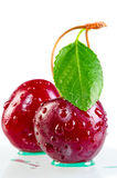Two red cherry with dew drops Royalty Free Stock Photo