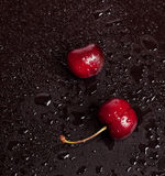 Two red cherry Royalty Free Stock Image