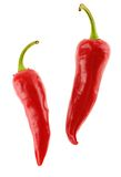 Two Red Chili Pepers Stock Photography