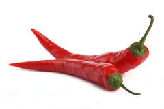Two Red chili pepper Stock Images