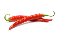Two red chili peppers Stock Photos