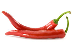 Two red chili peppers Royalty Free Stock Photo