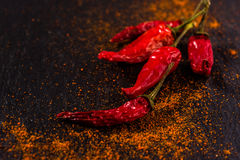 Two red chili peppers Stock Photography