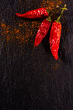 Two red chili peppers Stock Image