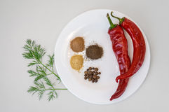 Two red chili peppers and ground pepper on white plate. Stock Photo