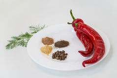Two red chili peppers and ground pepper on white plate. Stock Photography