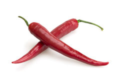 Two red chili peppers Royalty Free Stock Images