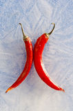 Two red chilli peppers frozen in ice Royalty Free Stock Photos
