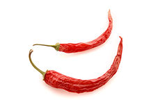 Two red chilly pepper isolated Royalty Free Stock Photography