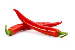 Two red chilly peppers Royalty Free Stock Photo