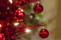 Two red christmas balls. In christmas tree Stock Photos